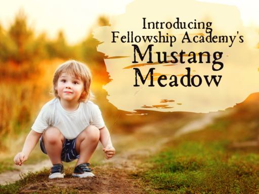 Introducing Mustang Meadow at Fellowship Academy.p